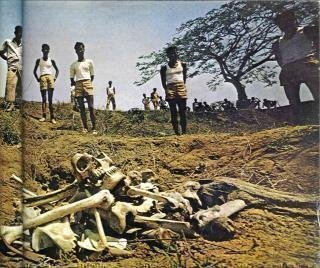 গণকবর ও মুক্তিবাহিনী, ন্যাট জিও, ১৯৭২